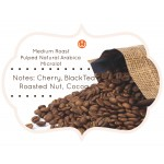 Baarbara-Estate-SLN-795-Pulped-Natural-Arabica-Coffee