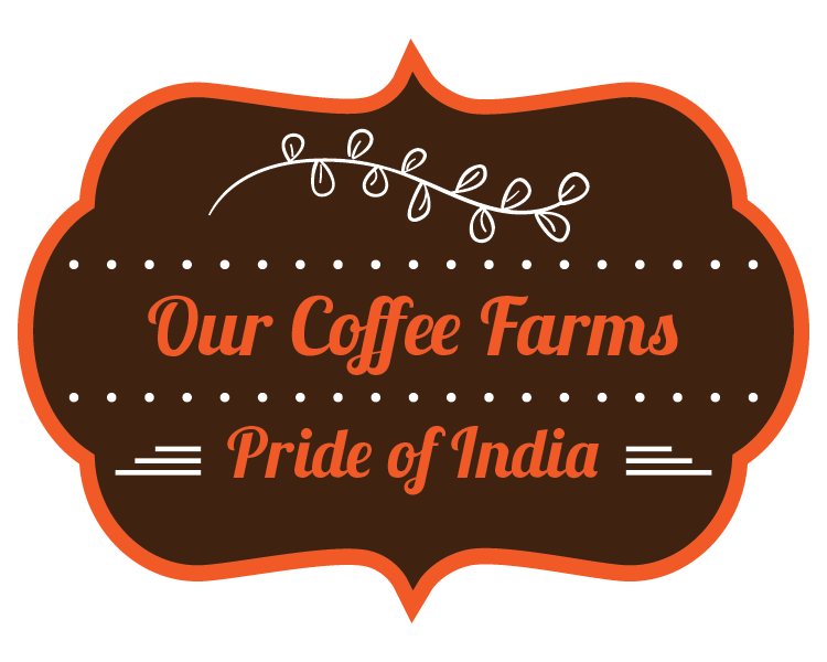 Our Indian Specialty Coffee Farms